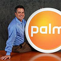 Ed Colligan Palm