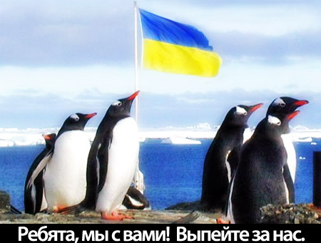 Первая встреча киевского клуба пройдет 16 марта