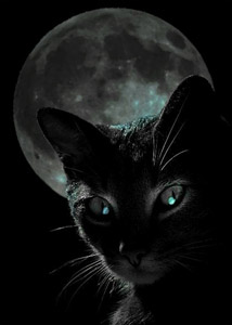 black-cat-moon1