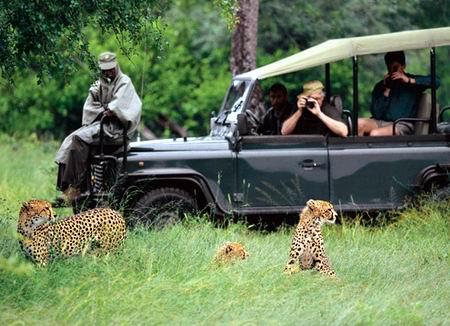 Safari 5 вышел