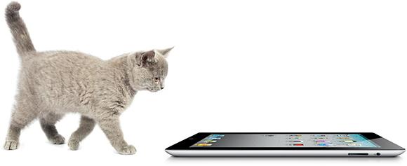 Friskies — игры для кошек на iPad [Update]