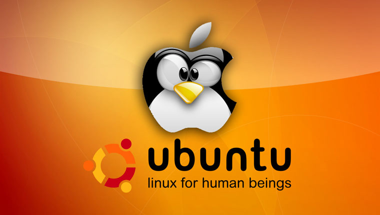 Recover data for linux download