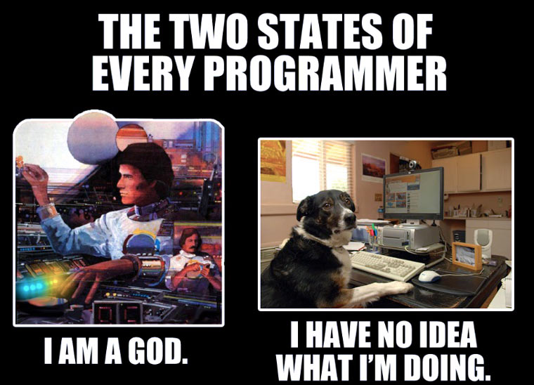 two_states_of_programmer