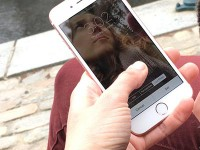 Как сохранять «живые» фото для отправки на другие устройства?