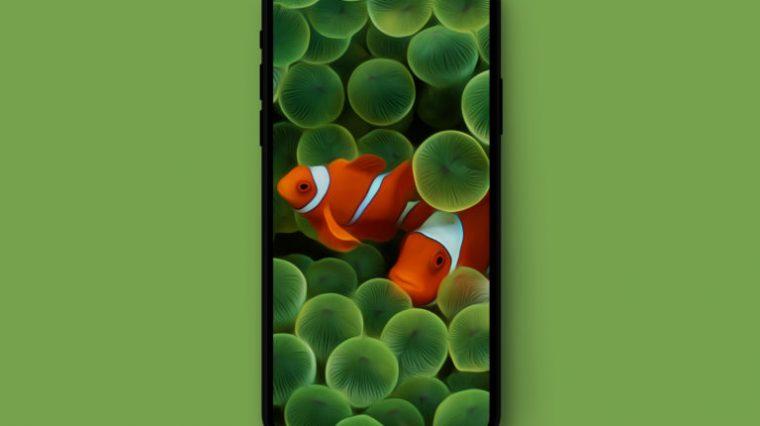 Оригинальные обои iPhone оптимизировали под iPhone X