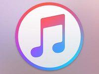 Сколько iPhone можно привязать к одному Apple ID