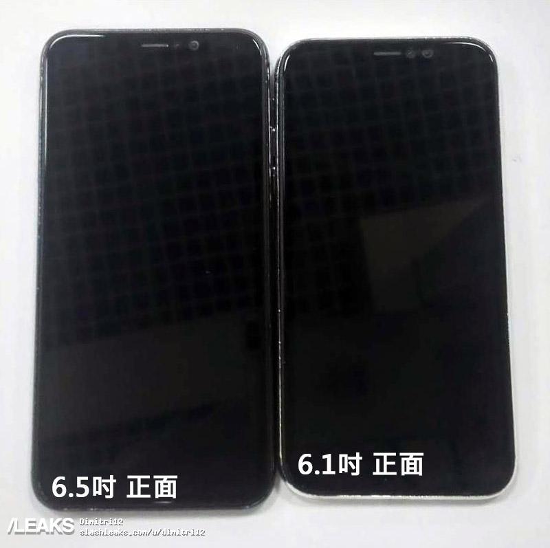 6,1-дюймовый и 6,5-дюймовый iPhone показали на фото