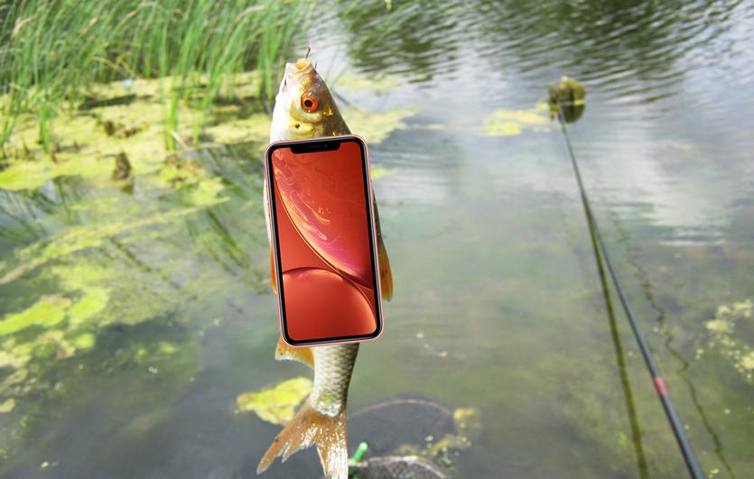 Почему бюджетный iPhone XR оказался таким дорогим