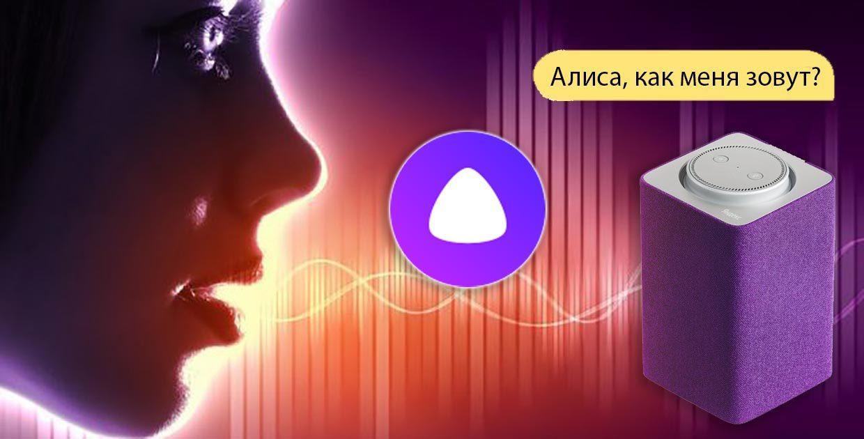 Учим Алису от Яндекса узнавать вас по голосу