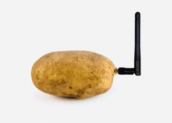 Хеллоу, потейто. Встречаем умную картошку с антенной для общения с овощем