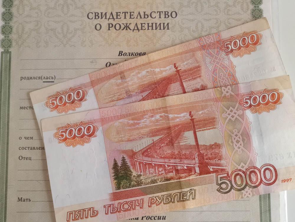 Запущен отдельный сервис для оформления выплаты 10 тысяч рублей на детей