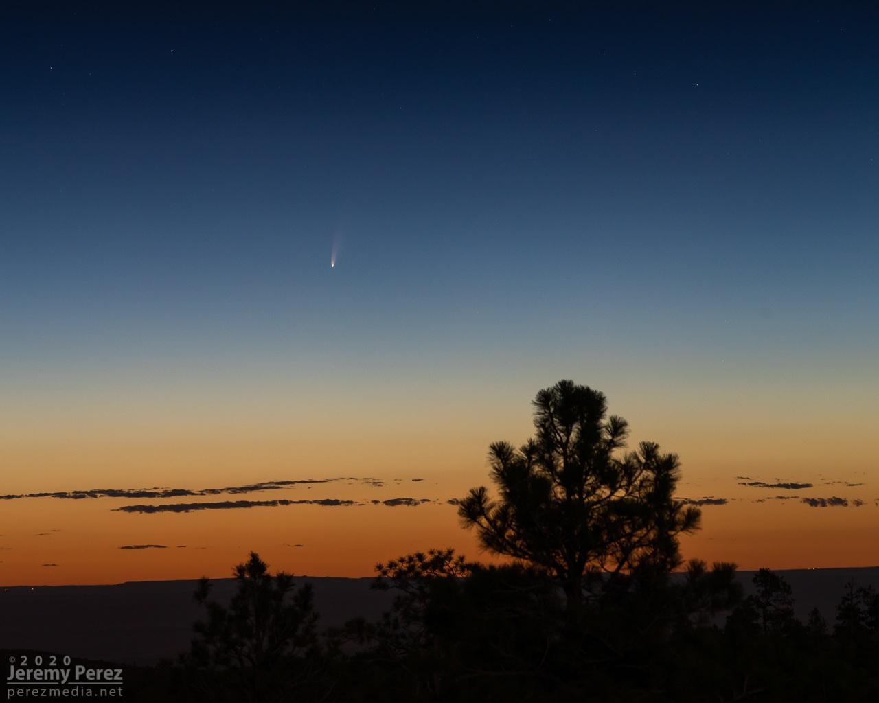 Над Россией пролетает яркая комета NEOWISE. Как её увидеть