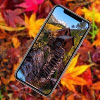 10 красочных осенних обоев iPhone в 4K