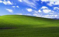 В сеть впервые слили исходный код Windows XP