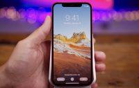 Вышла публичная iOS 14.3 beta 1