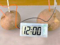 15 отличных вещей с AliExpress. Часы из картошки