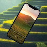 10 ярких обоев iPhone с природой: горы, равнины и леса