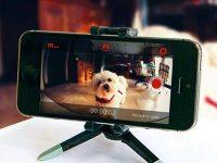 Как использовать iPhone или iPad в качестве камеры наблюдения