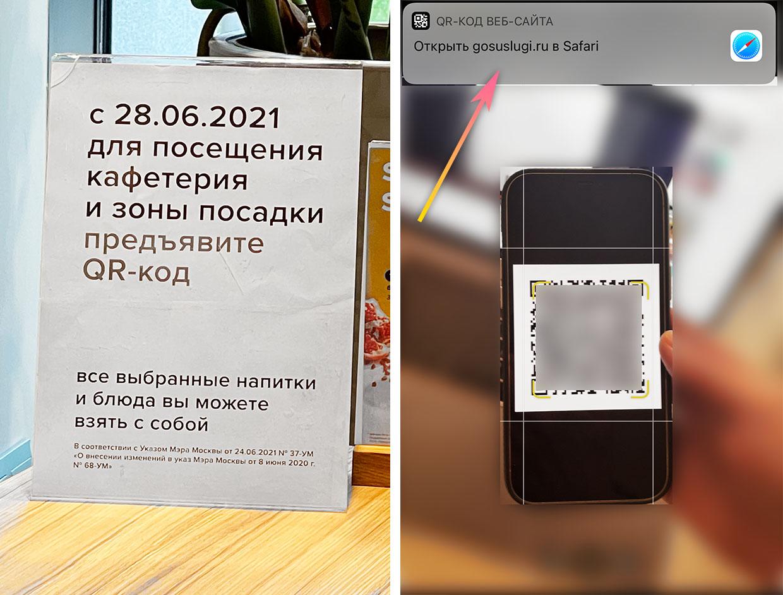 В Москве ввели QR-коды. Как их подделывают, сколько стоят и что за это грозит