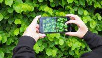 5 скрытых возможностей iPhone. Например, шпионская прослушка