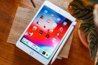 Apple спрашивает у владельцев iPad mini, устраивает ли их размер экрана