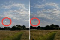 iOS 15 научилась удалять блики объектива с фотографий на iPhone