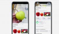 Камера в приложении Яндекса научилась распознавать еду и считать калории в ней