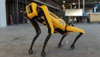 Робот Boston Dynamics хорошо потанцевал с девчонками на стадионе в США